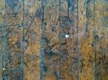 Emerson-Ithaca-02201539