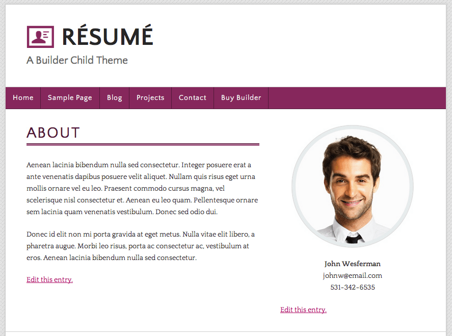 Great Example Of A Resume