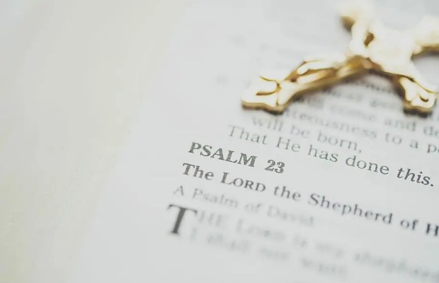 Psalm is the collection of poem. Its purpose is to be sung to priase the lord.