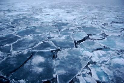 Arctic_Ice_2