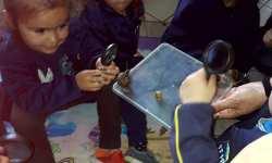 Biología con Preescolares