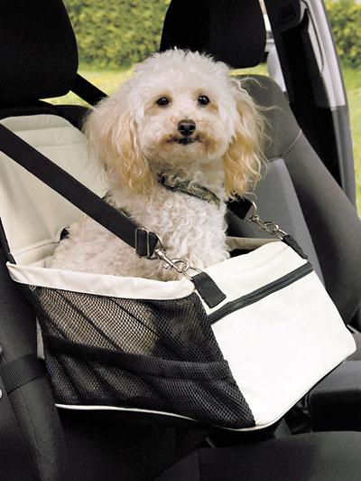 Seggiolino da auto per animali  289351  Dmail