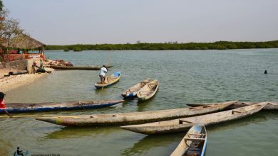 Photo de Sénégal : Région du Siné Saloum
