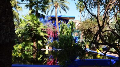 Photo of Les jardins de Marrakech