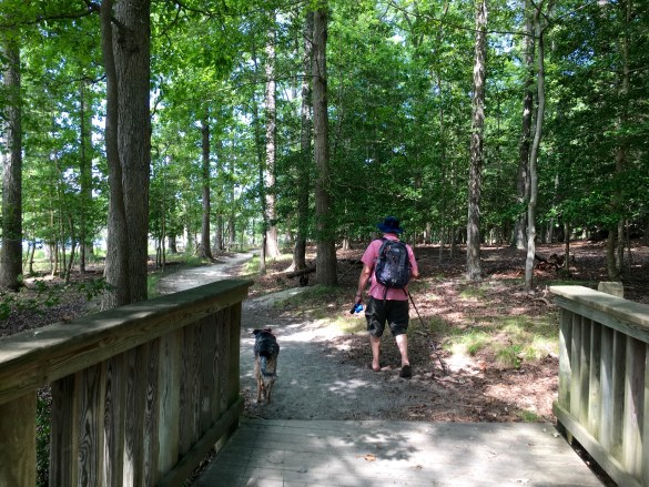 Review: Newport News Park Campground. Going Local!