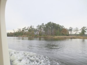 Goose Creek on the Way to Oriental