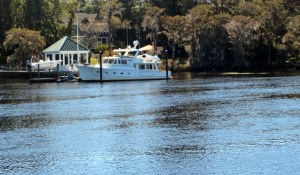 Another Fleming Along the Waccamaw