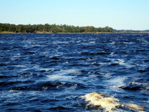 Cape Fear River - Looking Pretty Good