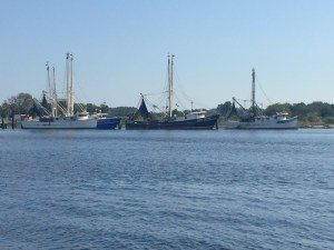 Fishing Vessels Along the St. Johns River