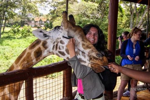 a girl hugging a giraffe's head