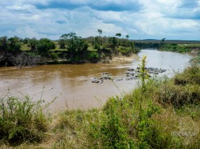 view over the Mara River in Masai Mara National Park