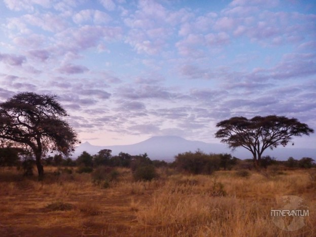The view of Kilimanjaro from our tent at our camp in Amboseli
