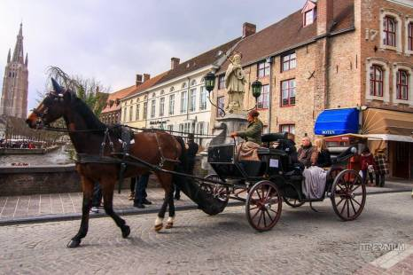 horse drawn cart bruges