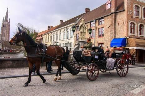 horse drawn cart bruges