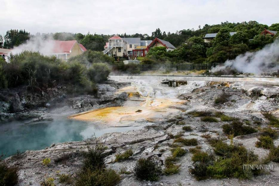 Intense geothermal activity around Rotorua, new zealand