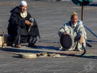 snake charmers, Jemaa el-Fnaa square, morocco itinerary