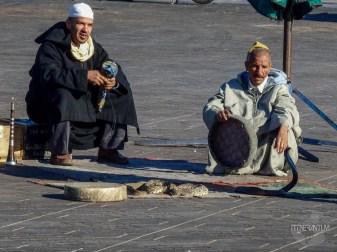 snake charmers, Jemaa el-Fnaa square, morocco itinerary