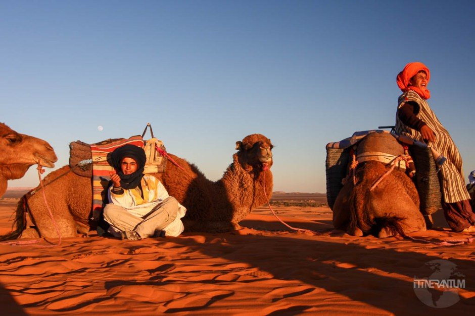 riding a camel in sahara desert tour, morocco itinerary