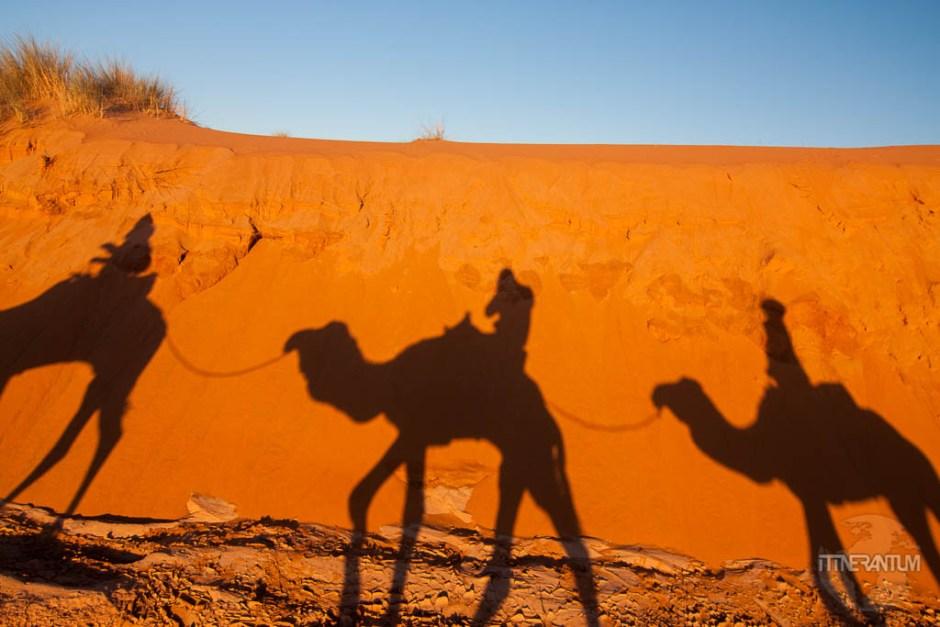 sahara camel ride, morocco itinerary