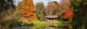 Visit to Sir Harold Hillier Gardens @ Sir Harold Hillier Gardens