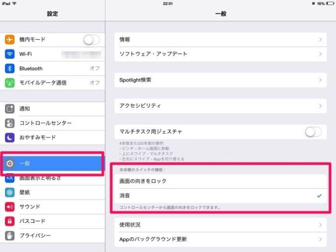 IMG 0104 ipad mute switch setting