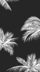 Download Tumblr Black And White Wallpaper HD Backgrounds Download itl cat