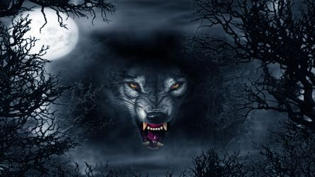 Evil Wolf Abstract Ultra Hd 4k Wallpapers Black Angry Wolf Wallpaper Hd #1951754 HD Wallpaper & Backgrounds Download
