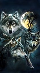 Wolf Wallpaper For Iphone Iphone Wallpaper Wolf #369241 HD Wallpaper & Backgrounds Download