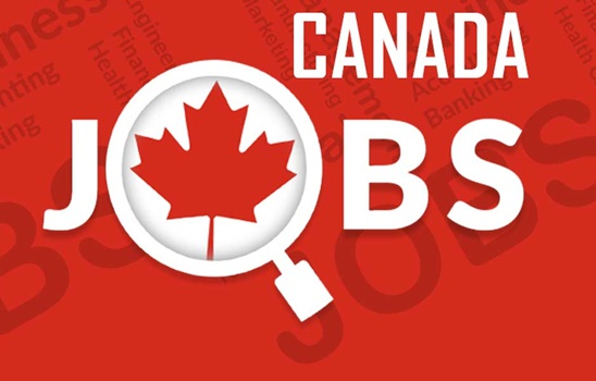 CANADA JOBS FOR NEW IMMIGRANTS   HOW TO GET A JOB IN CANADA FOR NEW IMMIGRANTS
