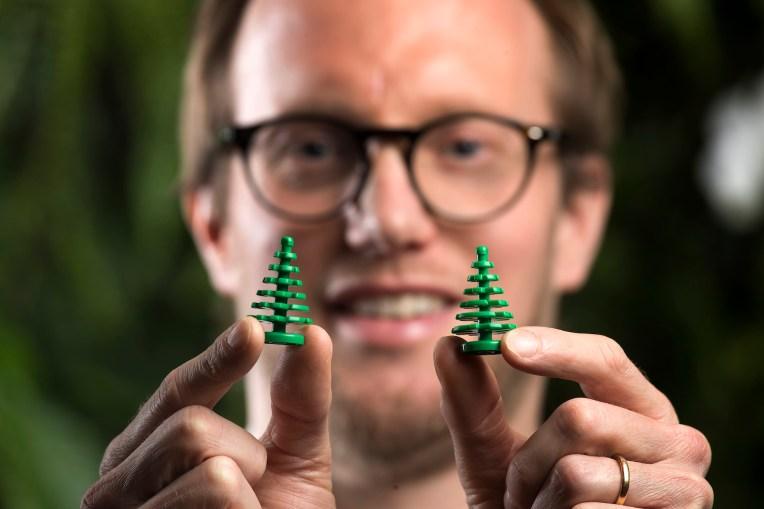 piante-sostenibili-lego6
