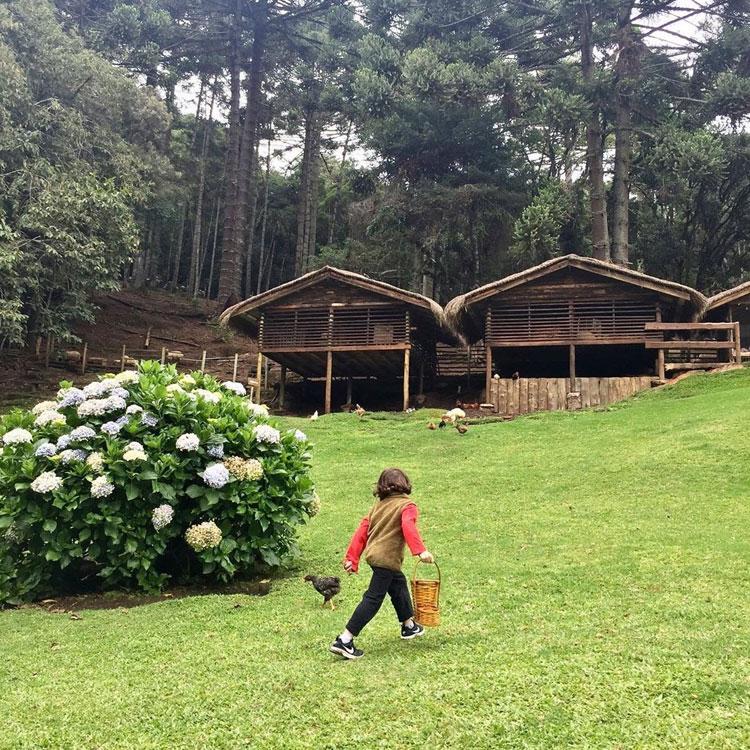 Locais para curtir o fim do isolamento social com as crianças Pequenos Exploradores It Mãe