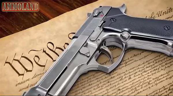 Constitutional We the People