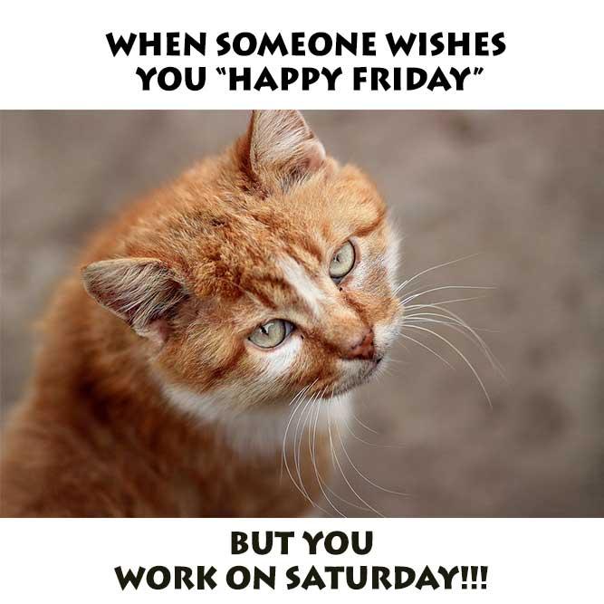 39 Best Funny Friday Memes – Trending Today on Social Media - It Memes