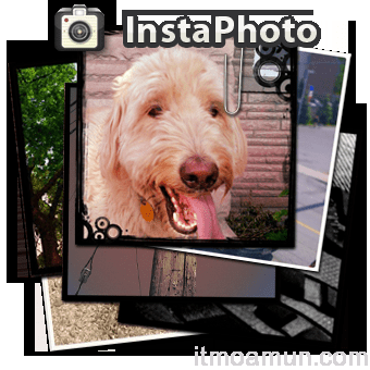 InstaPhoto, InstaPhoto App, InstaPhoto BlackBerry,  App for BlackBerry, Instagram