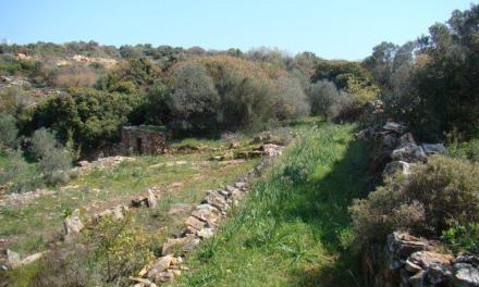 Μοναδικό δίκτυο μονοπατιών Θυμιανούσικης πέτρας στην Χίο