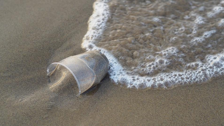 Αντίο στα πλαστικά μιας χρήσης με δύο Οδηγούς του WWF Ελλάς