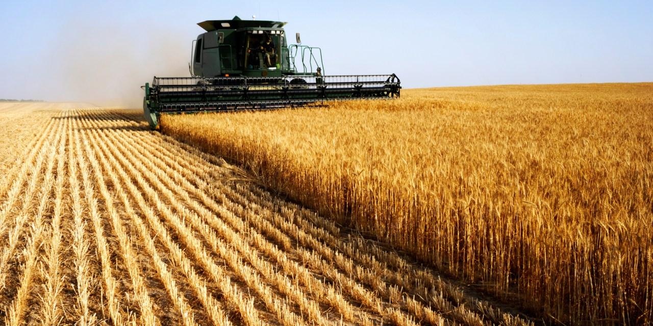 Ιστορική χρονιά το 2020 για την εξωστρέφεια του αγροτικού τομέα