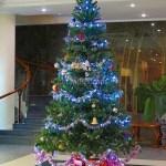 【ベトナム旅行】ベトナムのクリスマスツリー