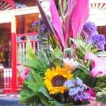 【台湾旅行】台湾の花は色が鮮やか
