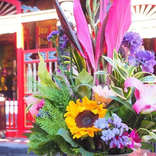 台湾の花は色が鮮やか。#台湾 #台北 #龍山寺 #花 #ひまわり