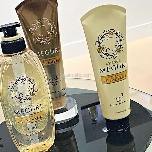 花王ASIENCE MEGURI SALON(アジエンスめぐりサロン)で無料の髪質カウンセリングとヘアケア体験 その1