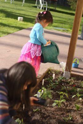 Taking turns watering the garden