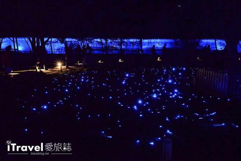 《京都賞楓景點》青蓮院門跡:夜間點燈拜觀,造訪東山青燈點點的迴游式日式庭園