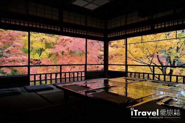 《京都赏枫景点》八瀬瑠璃光院:2018必访京都绝美红叶窗景