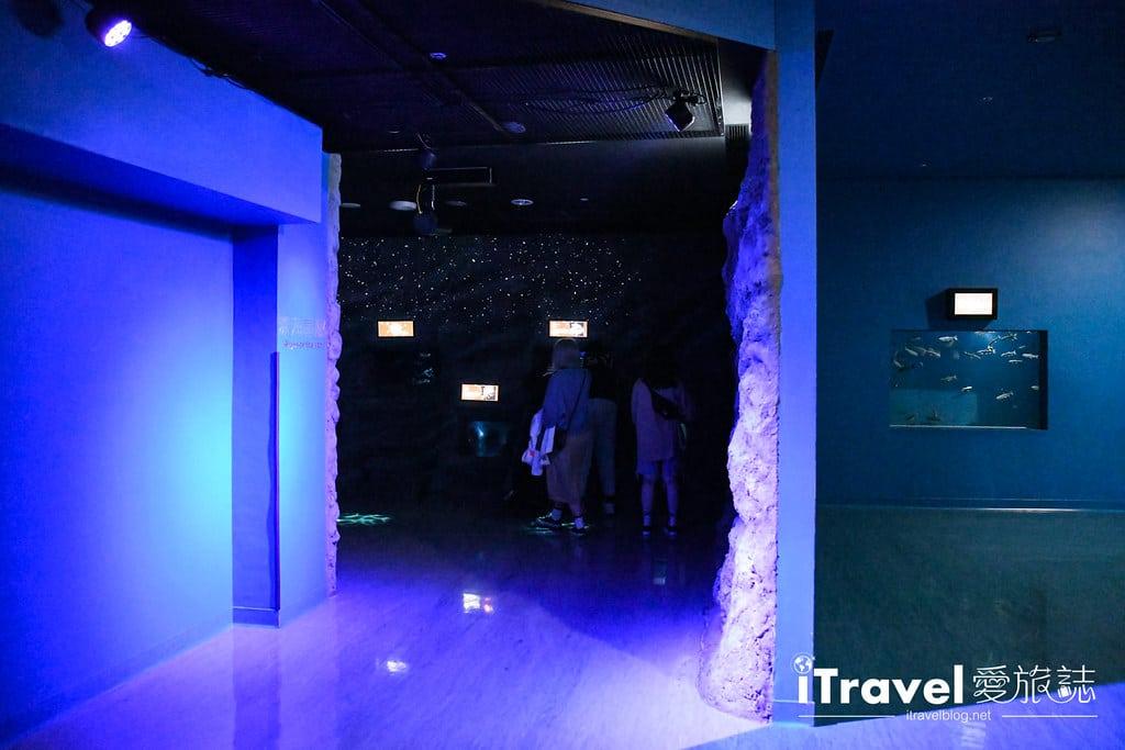 桃園八景島水族館 Xpark (54)