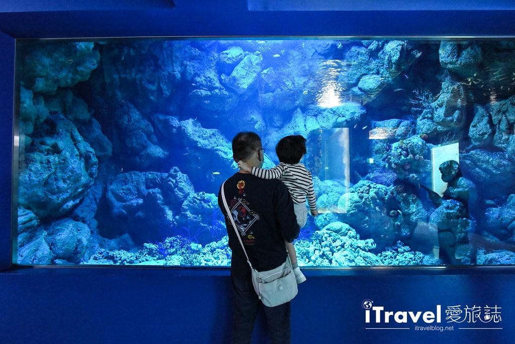 桃園八景島水族館 Xpark (10)