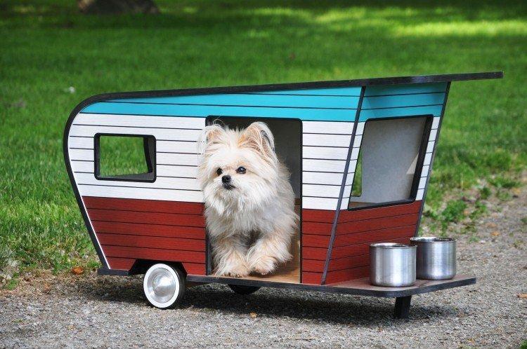 Αυτή είναι η καλύτερη λύση για ταξίδια με τον σκύλο σου - iTravelling