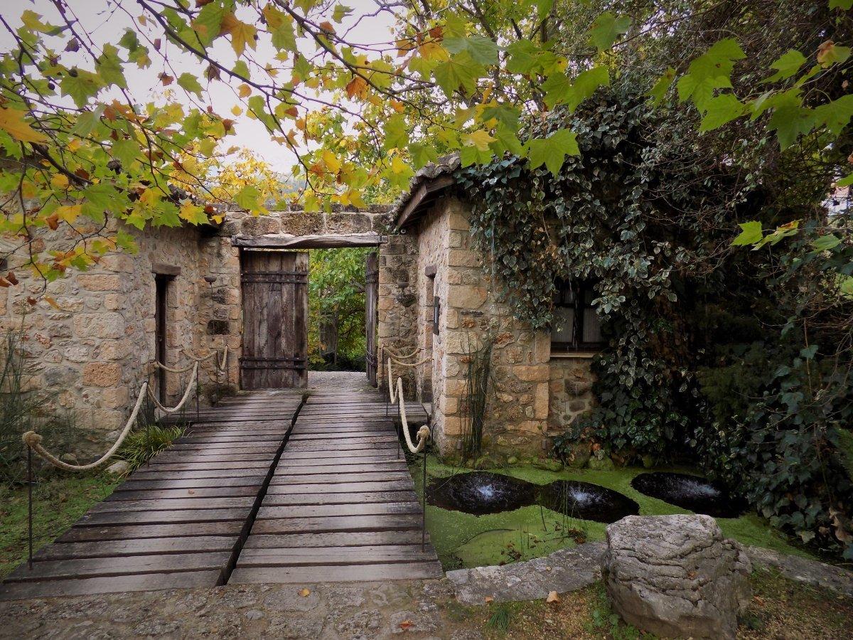 Area Synest: Ένα θεματικό πάρκο μέσα στο δάσος στο Συνεβρό
