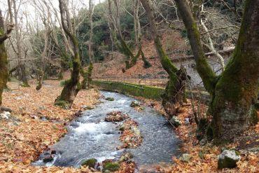 Πλανητέρο: Μια όαση από πλατάνια στην Ορεινή Αχαΐα - itravelling.gr