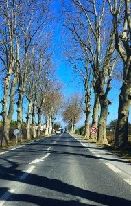 On the Road in France